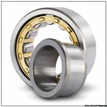 ZSL192317 full complement Cylindrical roller bearing 85X180X60