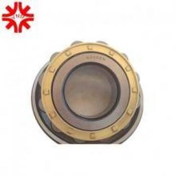 N317 Cylindrical Roller Bearing N-317 85x180x41 mm