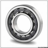 NJ2317-E-TVP2 + HJ2317-E Different Types Of Bearings Catalog 85x180x60 mm Cylindrical Roller Bearing NJ2317-E-TVP2 HJ2317-E