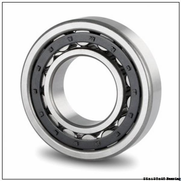 F A G precision rolling bearing NU2317ECP Size 85X180X60 #1 image