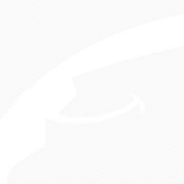 Spherical Roller Bearing 22317EKJA/VA405 85x180x60 mm #3 image